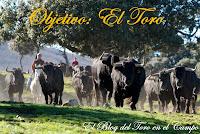 Objetivo: El Toro
