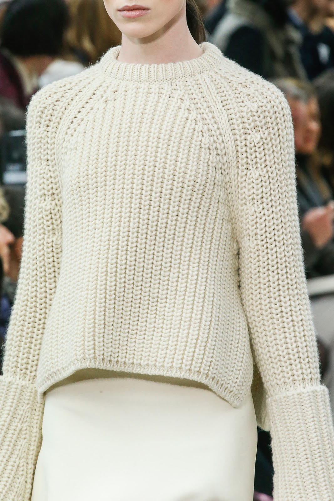 Celine Fall/Winter 2013