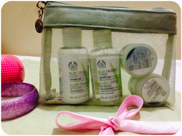 The Body Shop Aloe Starter Kit, Pakistani Beauty Blog