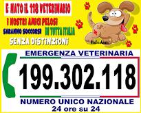 118 VETERINARIO