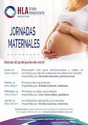 Jornadas Maternales