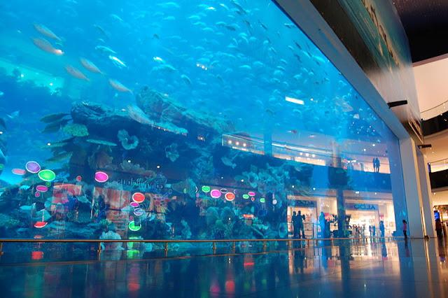 شاهد اكبر بالعالم Dubai-Aquarium-7.jpg