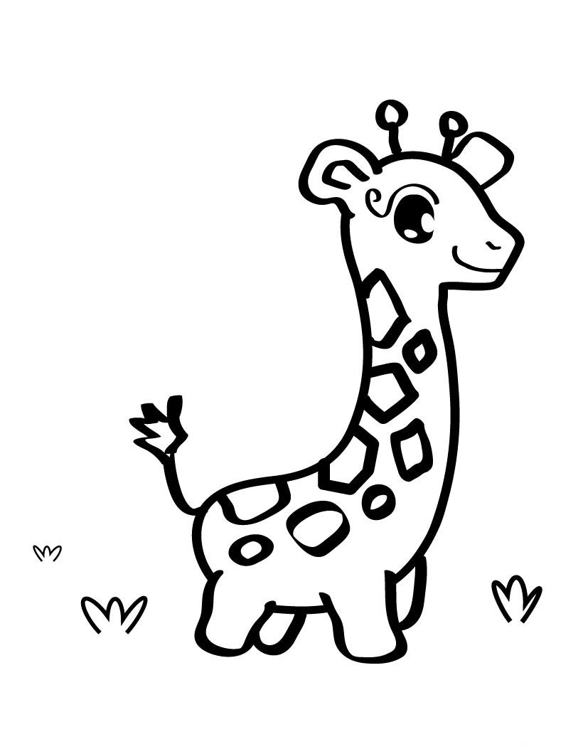 baby giraffe drawing coloring child coloring