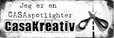 Casa spotlighter 2014