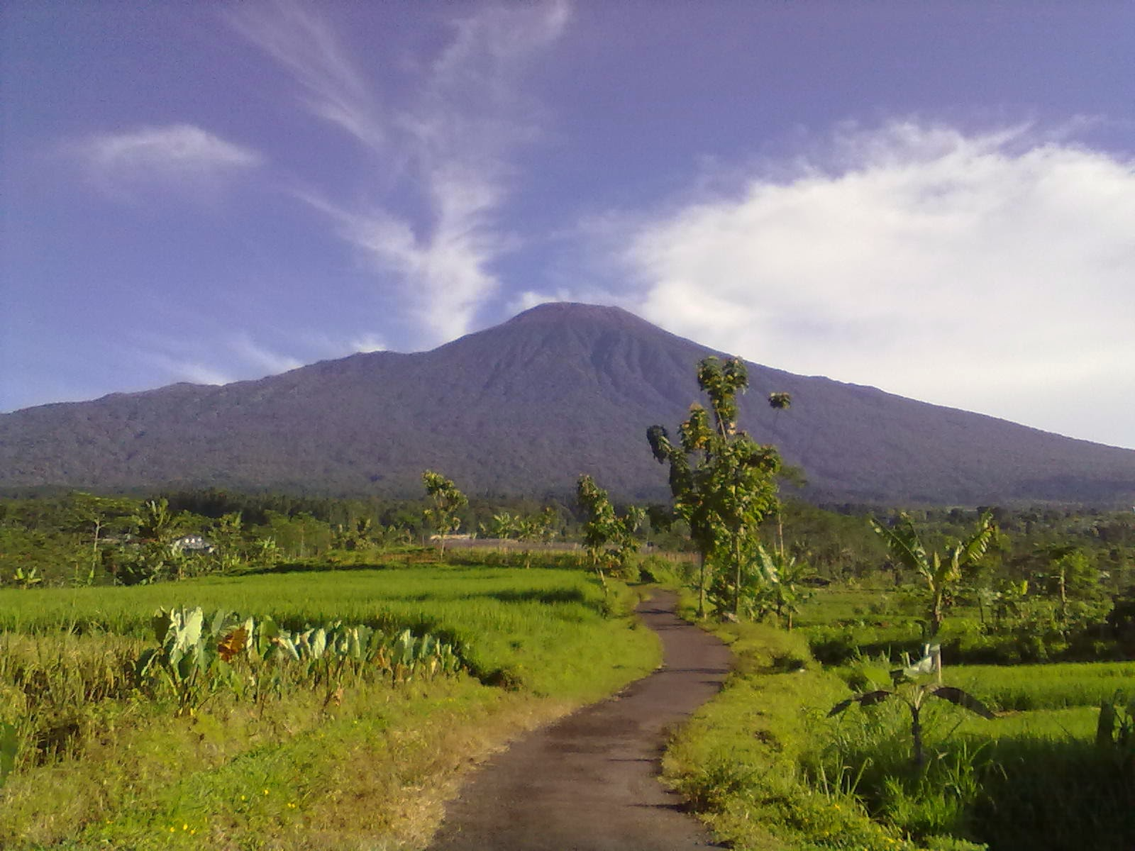 http://juragansejarah.blogspot.com/2014/03/misteri-gunung-slamet.html