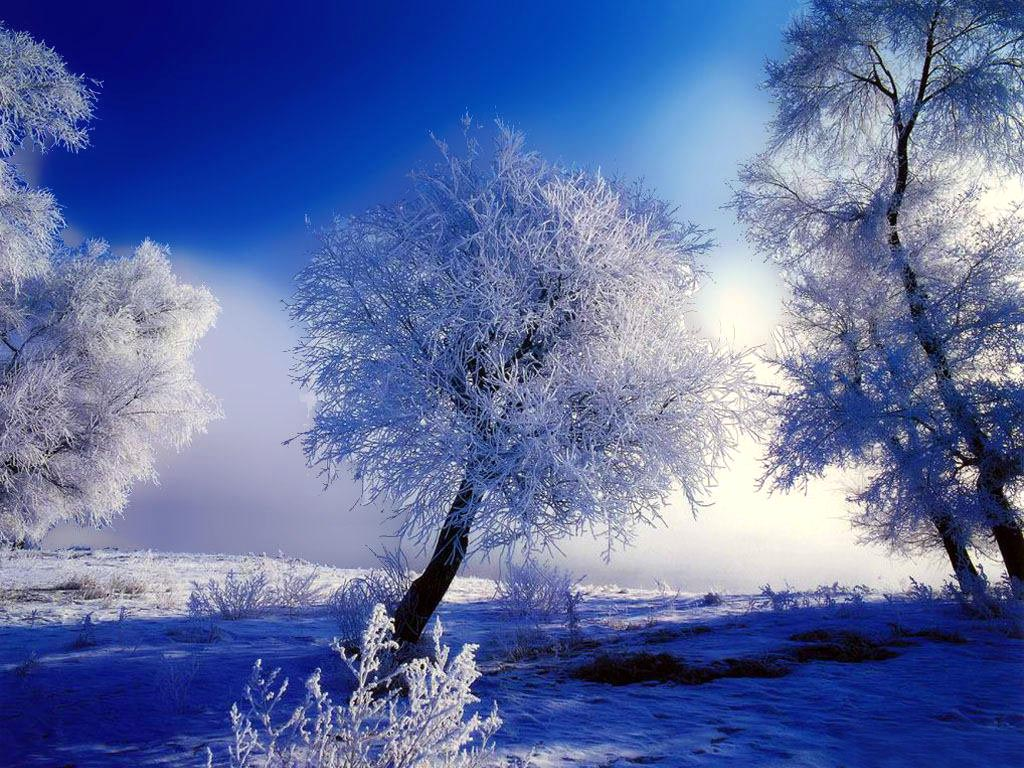 Nature Winter Wallpaper Beautiful Nature Winter