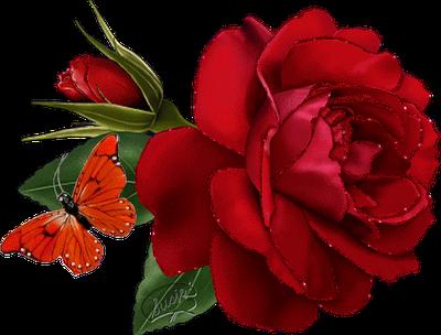 Banco de Imagenes y fotos gratis Flores Rojas parte 1