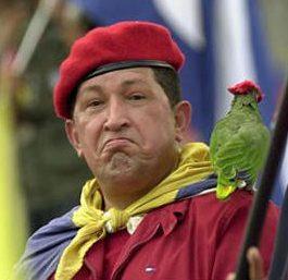 http://3.bp.blogspot.com/-HQgs3P5FVuM/Tk8gey9qKnI/AAAAAAAABgA/py2tIkXWcW8/s1600/hugo_chavez_parrot1.jpg