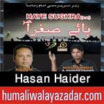 http://www.humaliwalayazadar.com/2015/10/hasan-haider-nohay-2016.html
