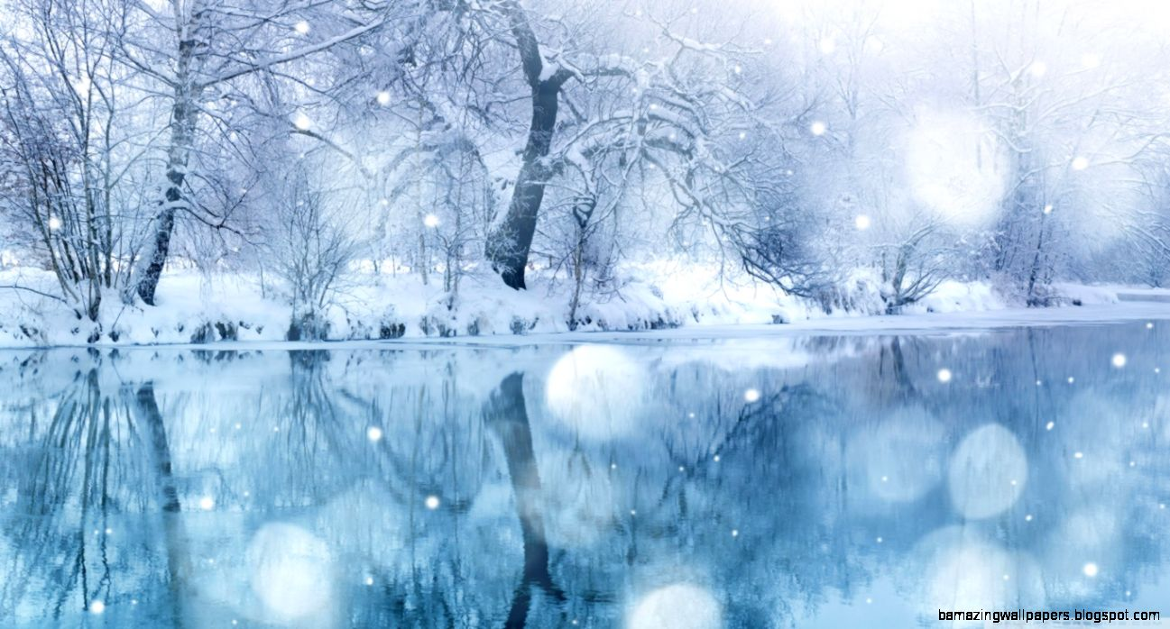 Winter Snowfall HD desktop wallpaper  High Definition  Mobile