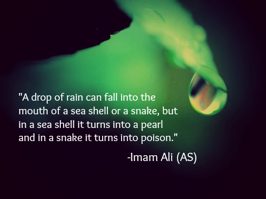 A drop of rain can fall into the mouth of a sea or a snake, but in a sea shell it turns into a pearl and in a snake it turns into poison.