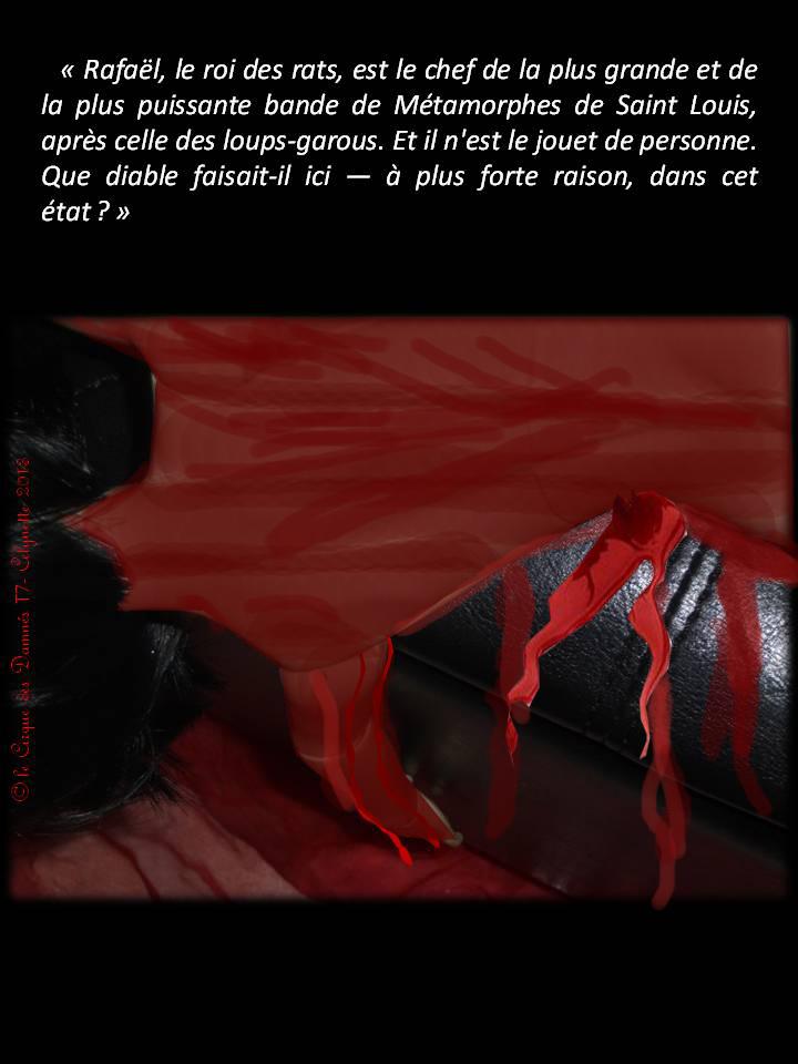 AB Story, Cirque...-S8:>ep 17 à 22  + Asher pict. - Page 63 Diapositive62+copie
