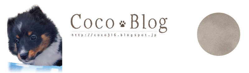 COCO BLOG