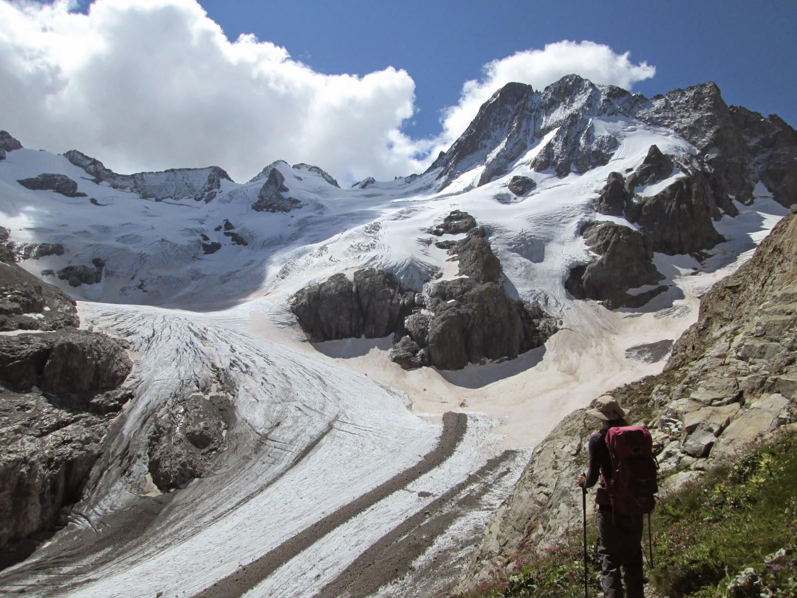 Overlooking the Glacier de la Pilatte, Ecrins National Park, Alps, France