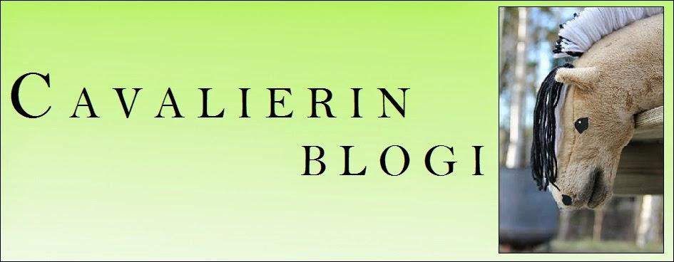 CR -blogi