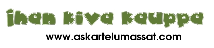 Ihan kiva kauppa