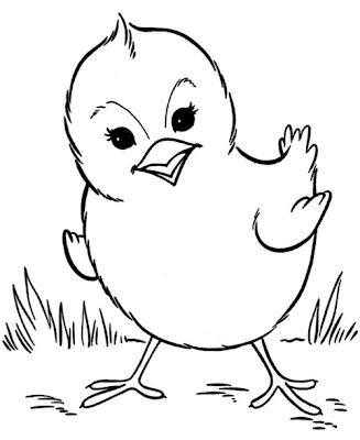 Chick Coloring Pages for Kids