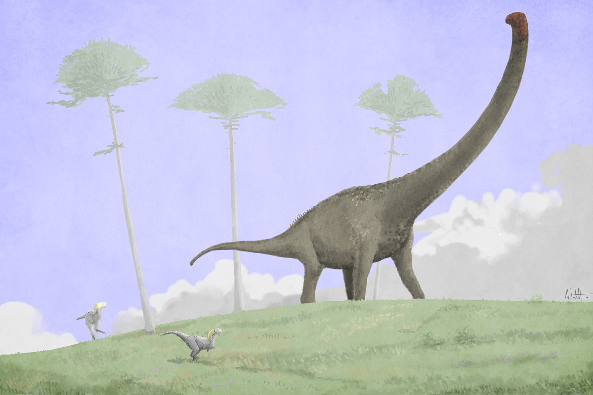 Soluciones Arqueotipicas [Juego] - Página 4 Dreadnoughtus%2BWitton%2Blow%2Bres