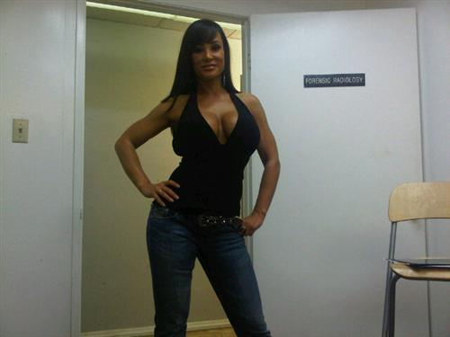 Lisa Ann and twitter go well together - Hot Hollywood Picture