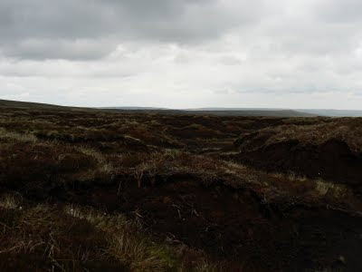 Large areas of peat hags are often found on the high North Pennine moors