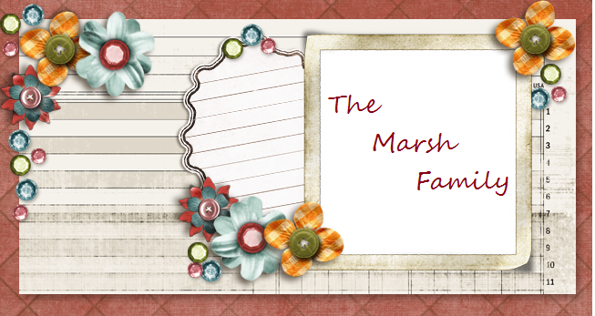 The Marsh Family Blog