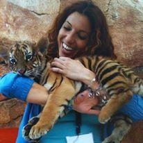 Tigre bebé