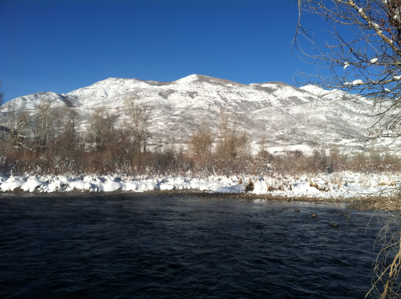 Provo river fly guy year round fishing blog november 13 for Provo river fishing report
