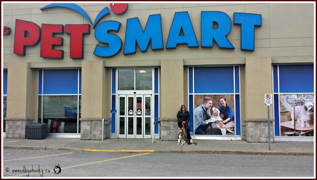 Shopping for dog food at petsmart