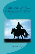Christopher's Trail, sequel to The Cattle King
