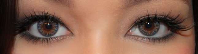 Neo Cosmo 4 Tone Lucky Clover Gray, Circle Lens Shop, Circle Lens, Colored Contacts, EyeCandy's