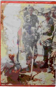 Image result for Tuke Gabiley