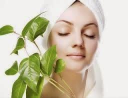 perawatan muka alami