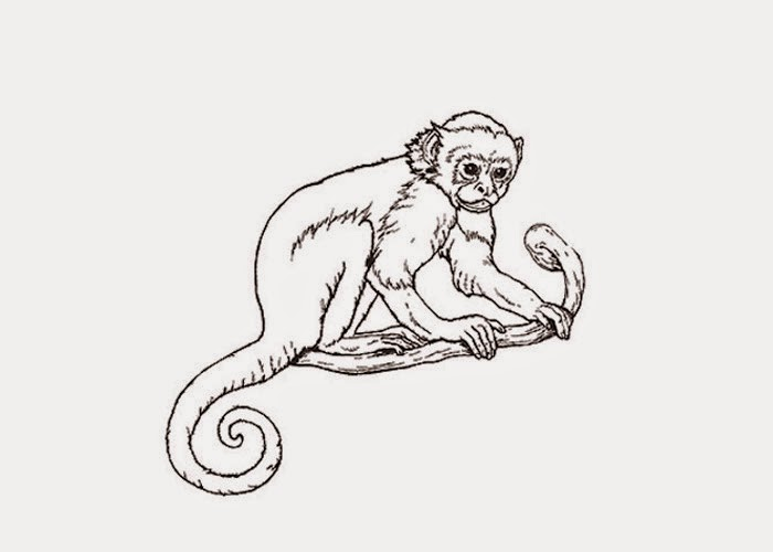 Howler Monkey Coloring Page 07 05 13 Free Pages And Books For