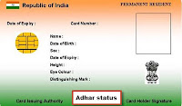 Aadhar Card(UID) Online Application Status and Aadhar Card Download at www.uidai.gov.in