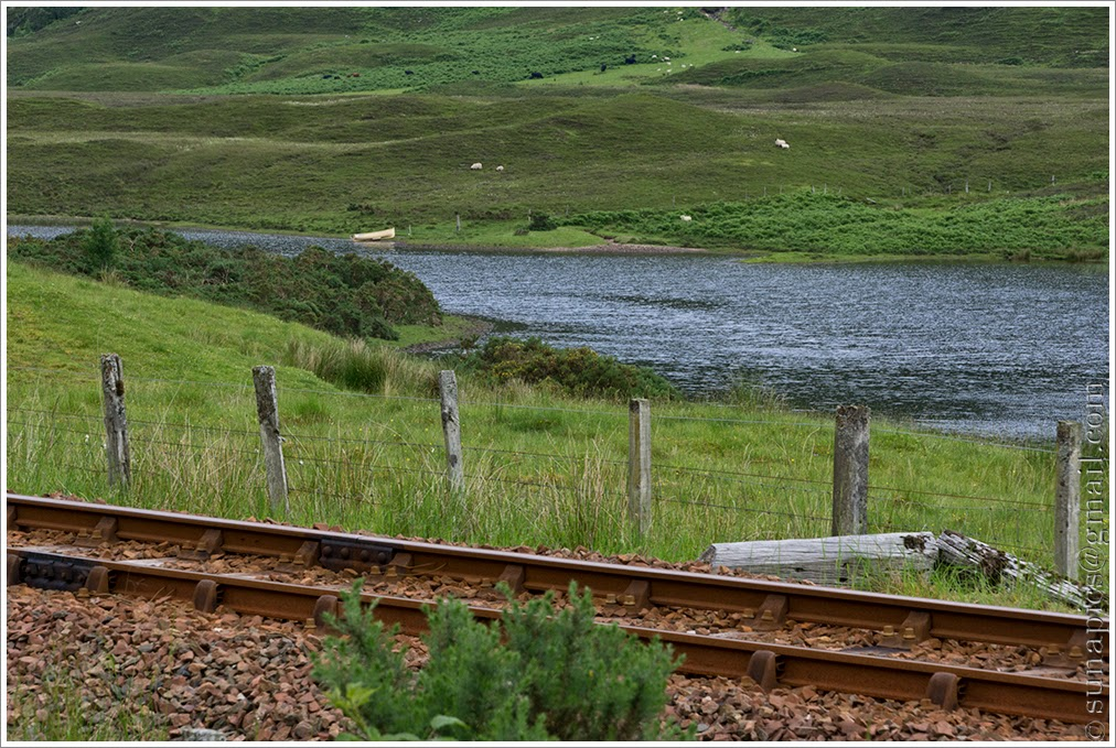 Sunday afternoon strathcarron to gairloch 47 miles diary of a a play on words here passing places malvernweather Choice Image
