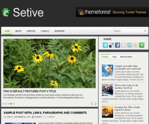 Setive Blogger Template
