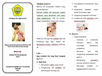 Gambar Nutrisi Ibu Menyusui Leaflet Nutrisi Ibu Menyusui