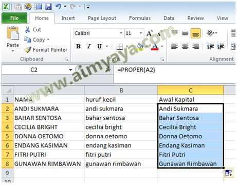 Gambar: Contoh Hasil Pemakaian Fungsi PROPER() untuk Daftar Nama