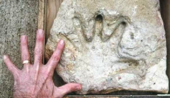 The 10 Most Puzzling Ancient Artifacts - Impossible Fossils