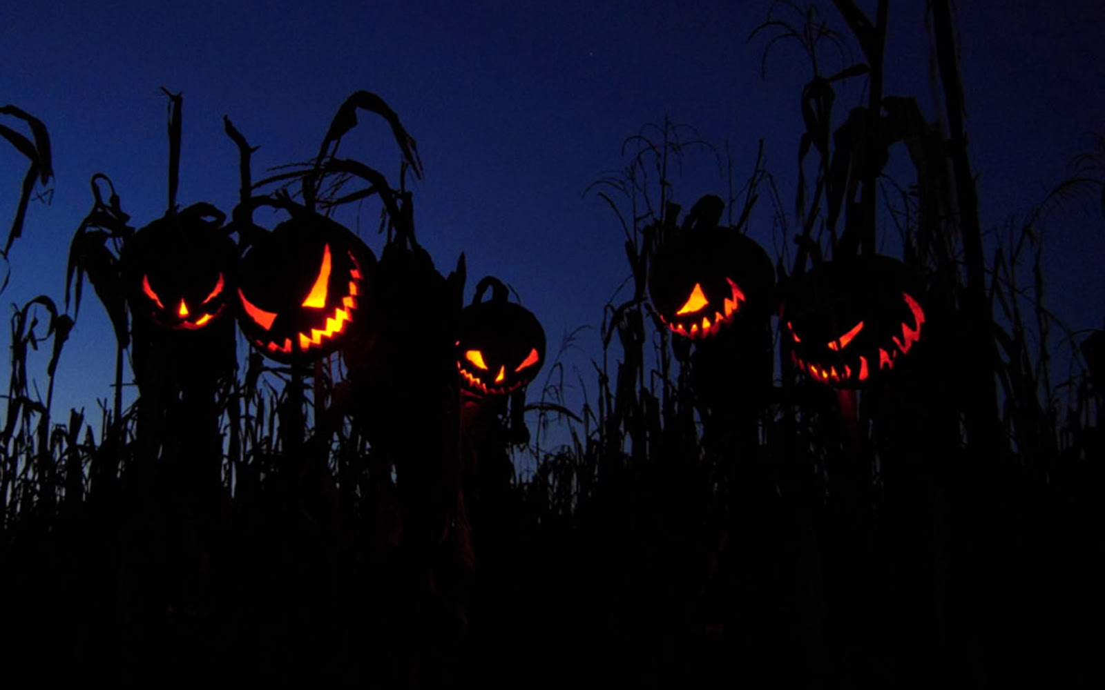 dia halloween: