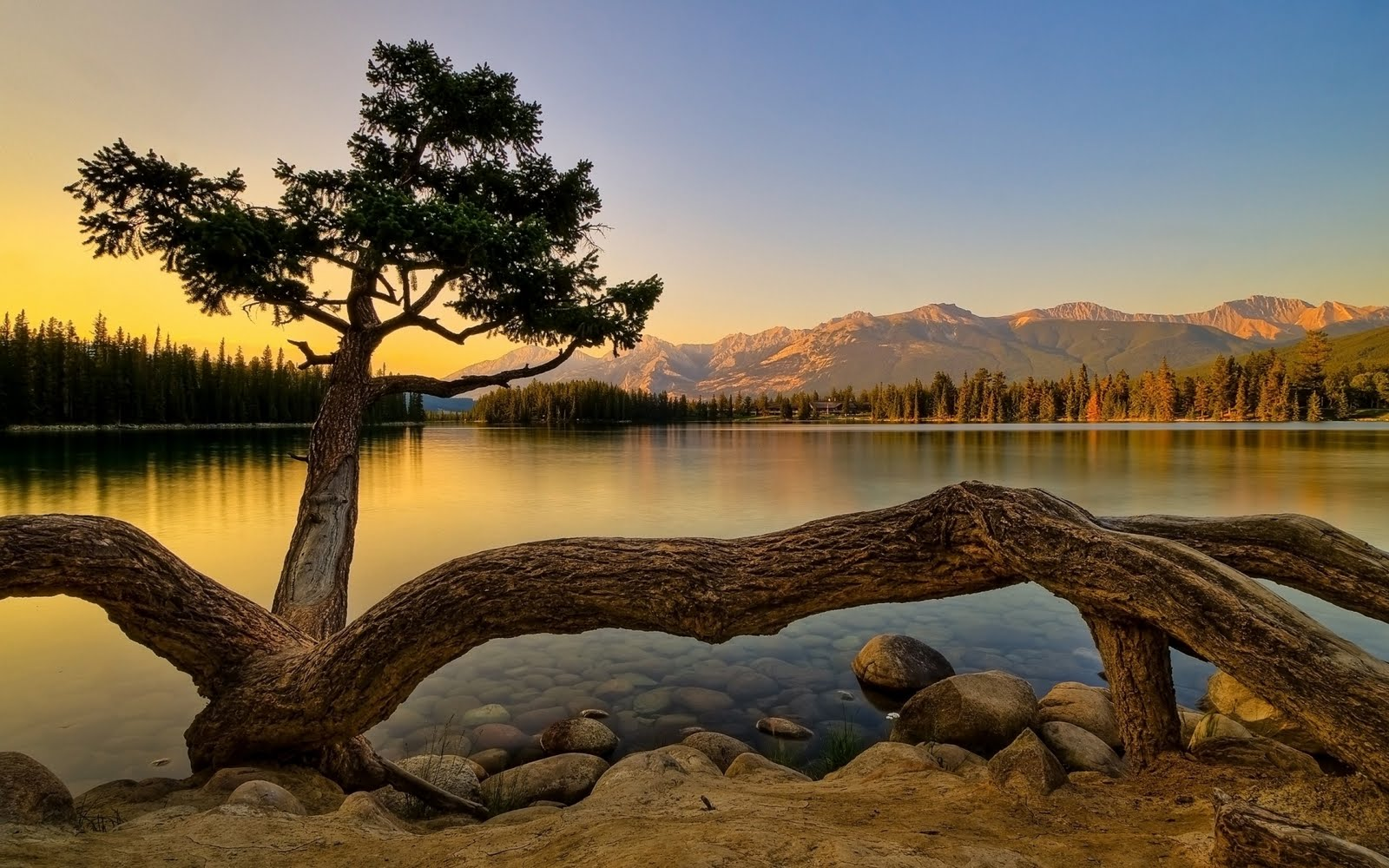 Paisaje de verano - Superb summer landscape
