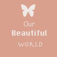 http://our--beautiful--world--365.blogspot.com.au/2013/12/week-26-christmas.html
