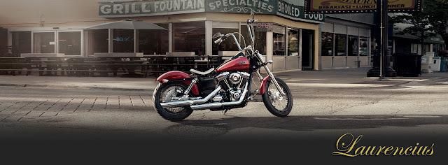 Motor-Harley-Davidson-Hard-Candy-Custom-2013_2