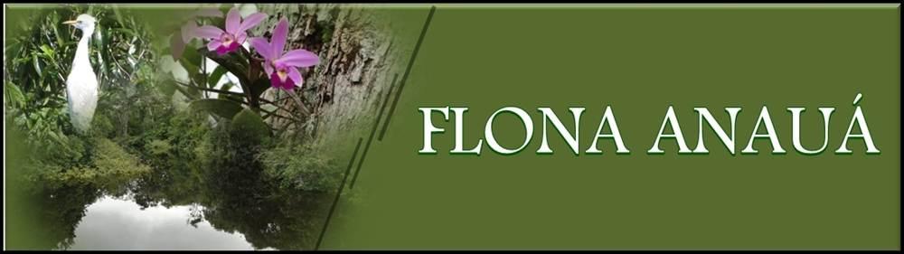 Floresta Nacional de Anauá (FLONA Anauá)
