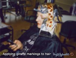 Ingrid Sylvestre giraffe hair