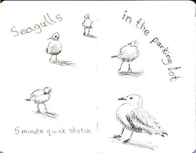 Seagulls in the Parking Lot -  5 Minute -  Sketch Pen and Ink - by Ana Tirolese ©2012