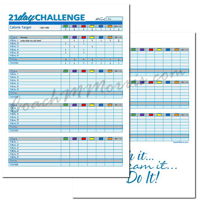 Insanity Deluxe Workout Schedule Insanity Deluxe Workout