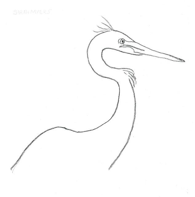 egret, bird, minimal, charcoal, art, drawing, study, animal, black, paper, arte, dibujo, nature, head, beak, simple,minimalist, minimalism, line, line-drawing, Sarah, Myers, artist, neck, pencil