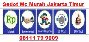 Solusi Sedot Wc Mampet Jakarta Timur 08111 79 9009