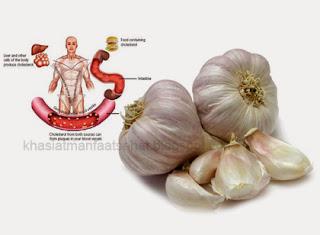 khasiat manfaat bawang putih
